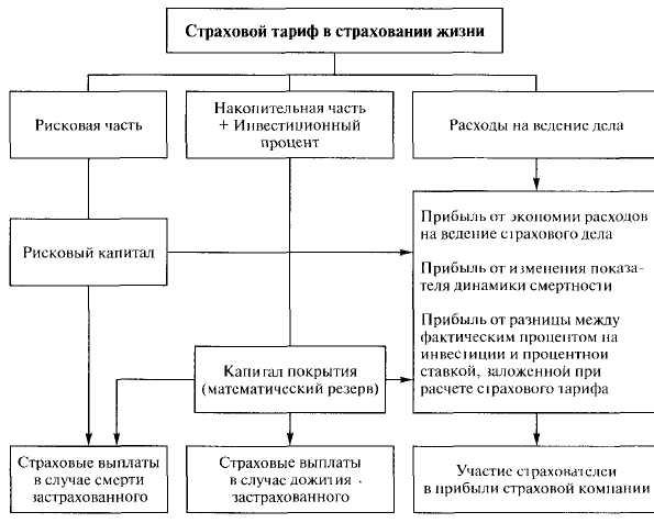 закончив Страховой тариф состав и структура каменный